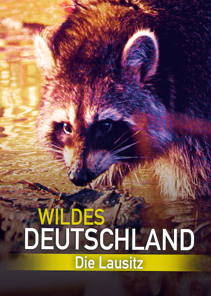 Wild Germany – Exploring Lusatia